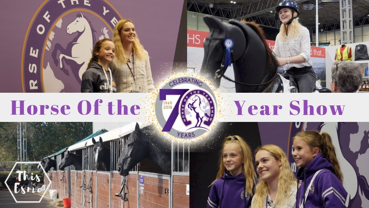 horse-of-the-year-show-2018-hoys-vlog-this-esme