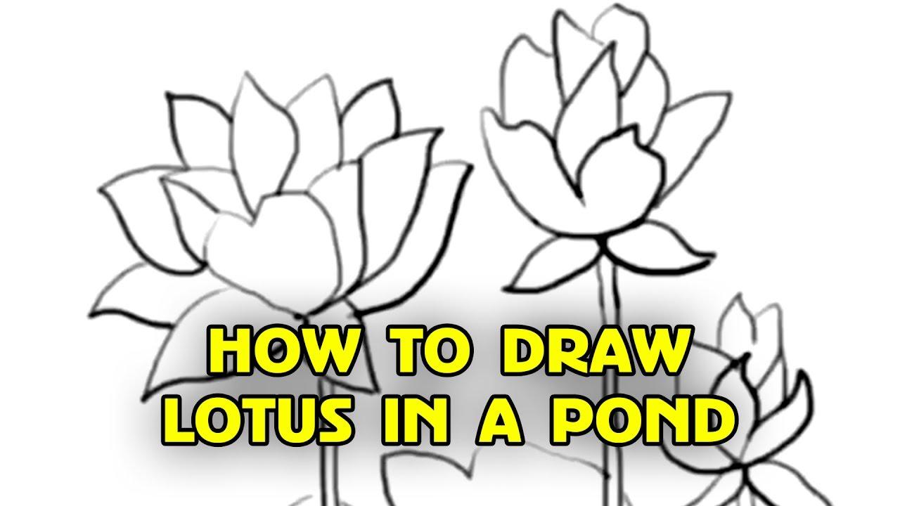 Free tutorial how to draw lotus flowers step by step by silly kids free tutorial how to draw lotus flowers step by step by silly kids mightylinksfo