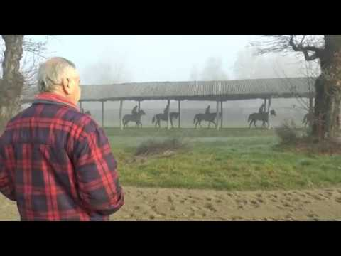 CANTER 15/12/2016 -
