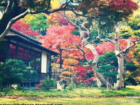 A List Of The Most Beautiful Places In Japan Youtube