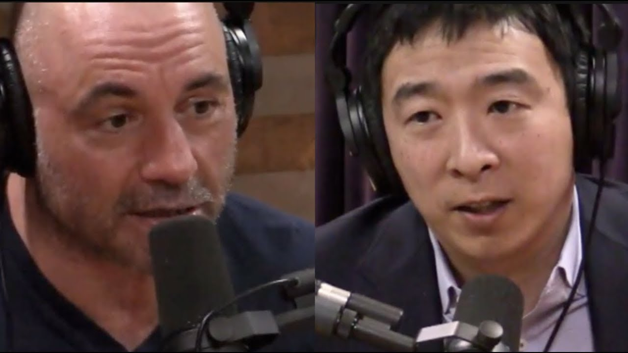 Image result for andrew yang joe rogan
