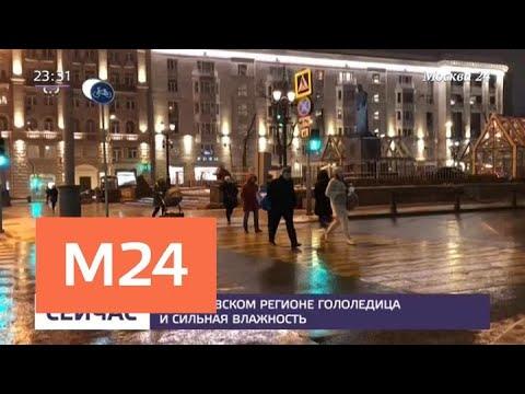 Смотреть фото В московский регион пришли гололедица и сильная влажность - Москва 24 новости россия москва