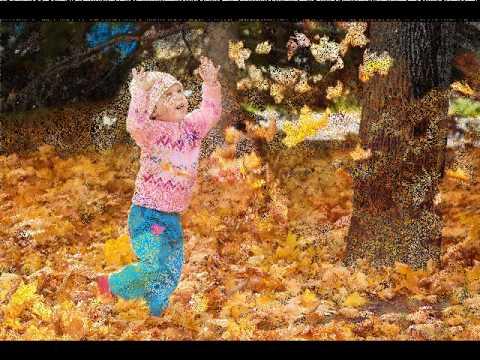 Стихи об осени Осенние стихи для детей