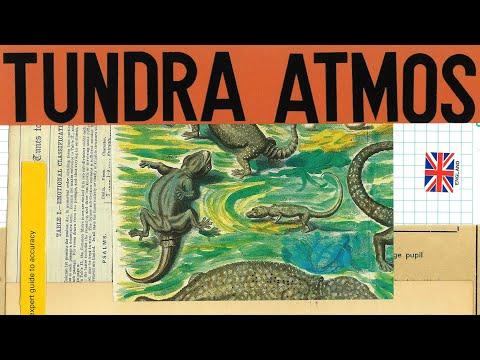 LABS Tundra Atmos