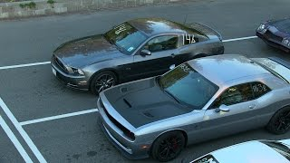 The best drag races of modern muscle cars-ZL1 vs Hellcat vs Shelby vs Boss 302 vs Mustang GT