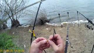 Последняя рыбалка сезона 2017 на кормушки