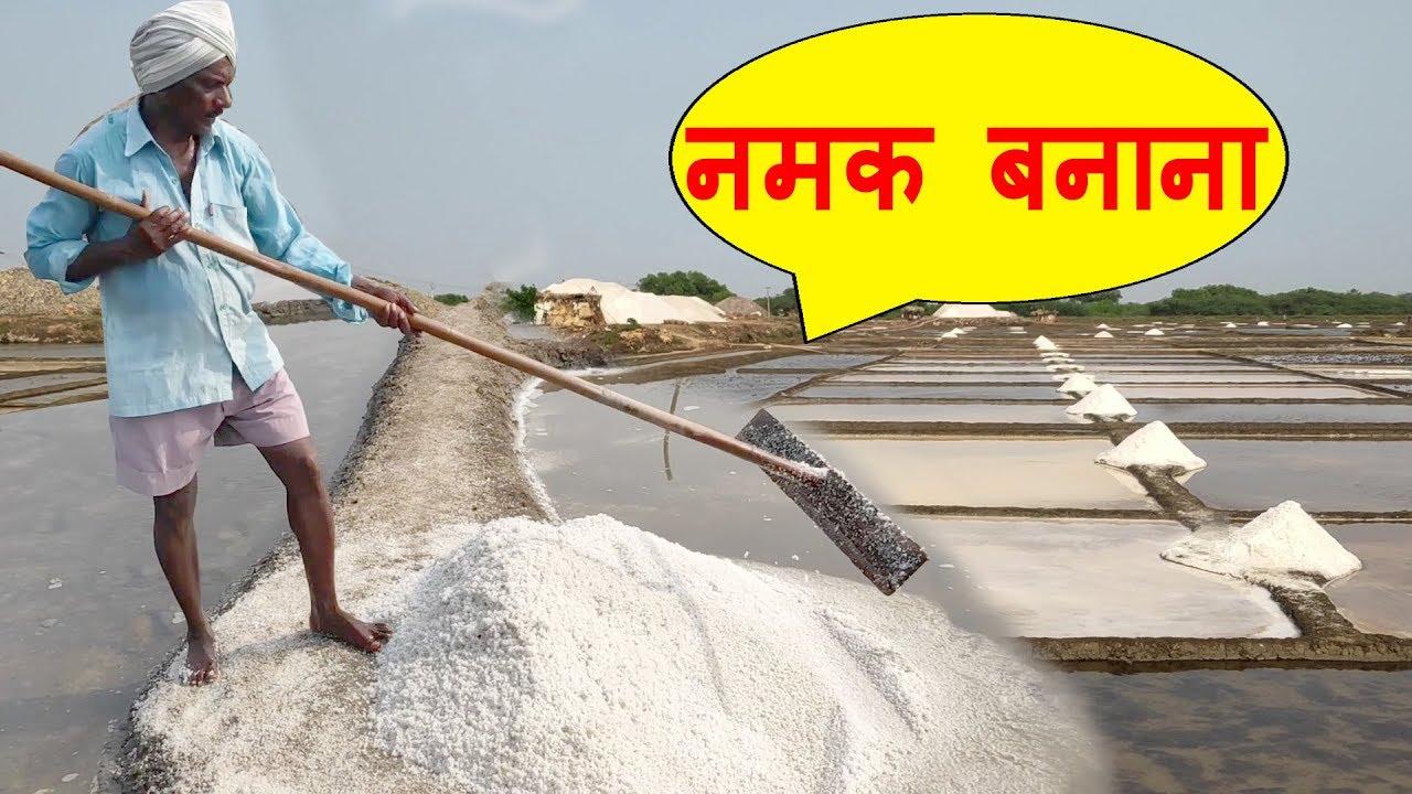 Natural Salt Making with Sea Water  NaCl  Salt Mineral Make Process India   नमक बनाने की प्रक्रिया