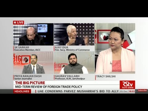 The Big Picture - Mid-term review of foreign trade policy