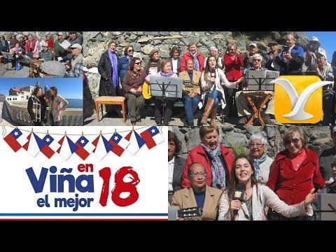 Viña del Mar en septiembre - Carolina Mestrovic desde el Castillo Wulff
