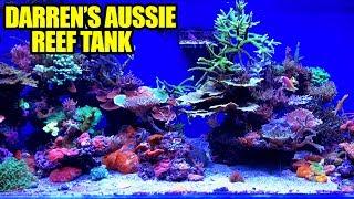 The Australian Reef Tank of Darren Hatfield, Australia Tour Pt. 12