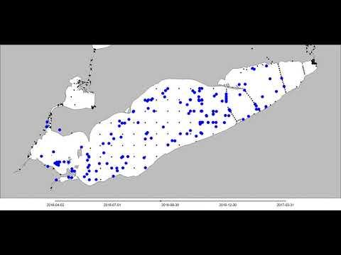 2016 Lake Erie  Walleye Fish Movement  West Basin