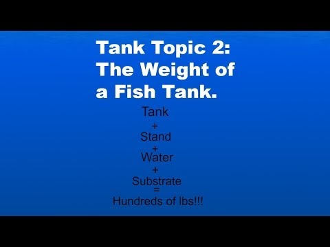 Tank Topic 2: The Weight Of A Fish Tank