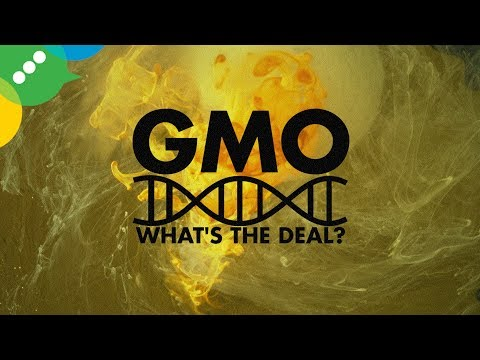 GMO: What Do You Want To Know?