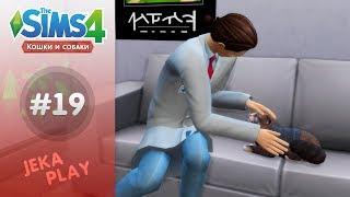 The Sims 4 Кошки и собаки | Кот везде и всюду! - #19