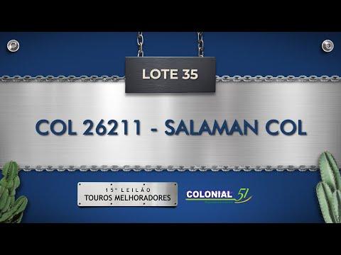 LOTE 35   COL 26211