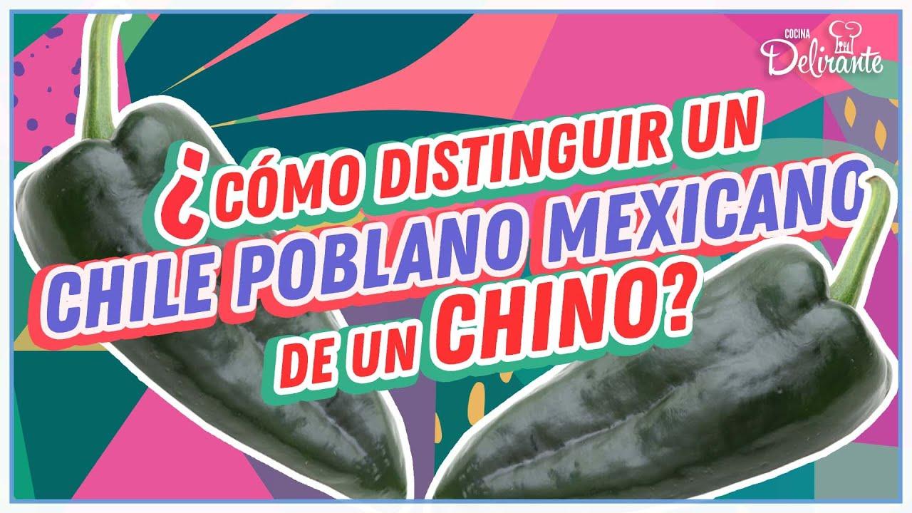 ¿Cómo distinguir un chine poblano mexicano de uno chino?