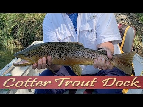 Arkansas White River Trout Fishing Report September 18, 2019