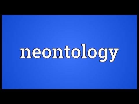 Header of neontology