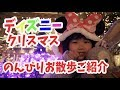 【ディズニークリスマス】のんびりお散歩しながらご紹介!ディズニーシー編