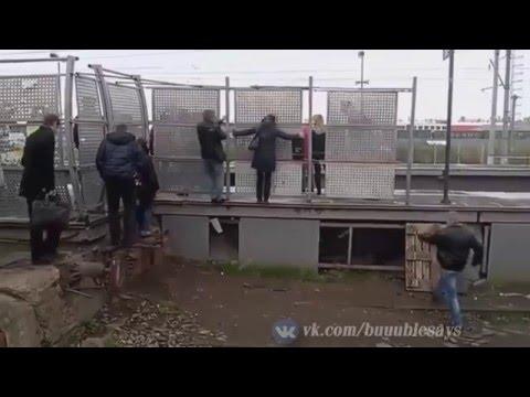 ЛУЧШИЕ ПРИКОЛЫ ЗА октябрь СУПЕР прикол +18 Октябрь 2016 Смешное видео приколы 2016