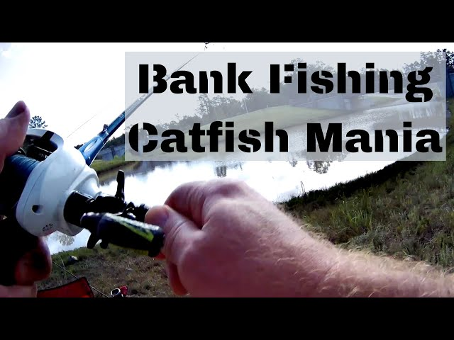 Bank Fishing Catfish Mania with my Brother