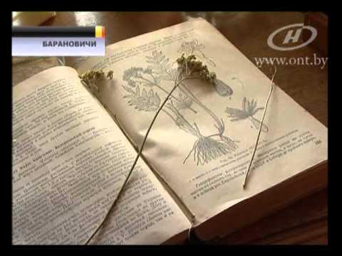 Новости для предпринимателя Беларуси - Предприниматель