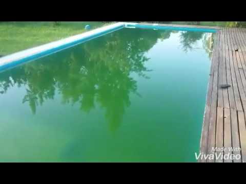 tutorial como limpiar piscina con agua verde youtube