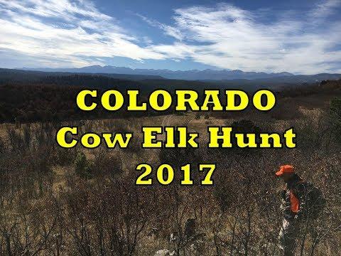 Colorado Cow Elk Hunt - My First Elk(Elks?)- RGO Ep 59