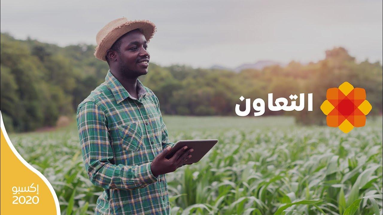 إكسبو 2020 | التعاون