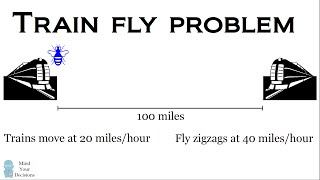 The Train Fly Problem - A Classic Math Puzzle
