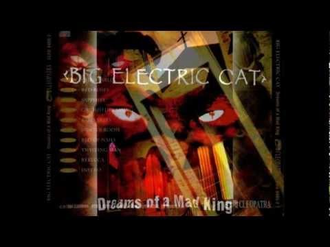 BIG ELECTRIC CAT - Rebecca