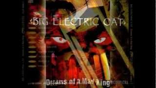 BIG ELECTRIC CAT - Rebecca