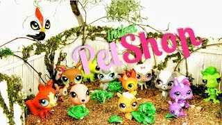 Doll Review: Littlest Pet Shop Collection Update | Plus Quick Craft: Lettuce - Doll Crafts