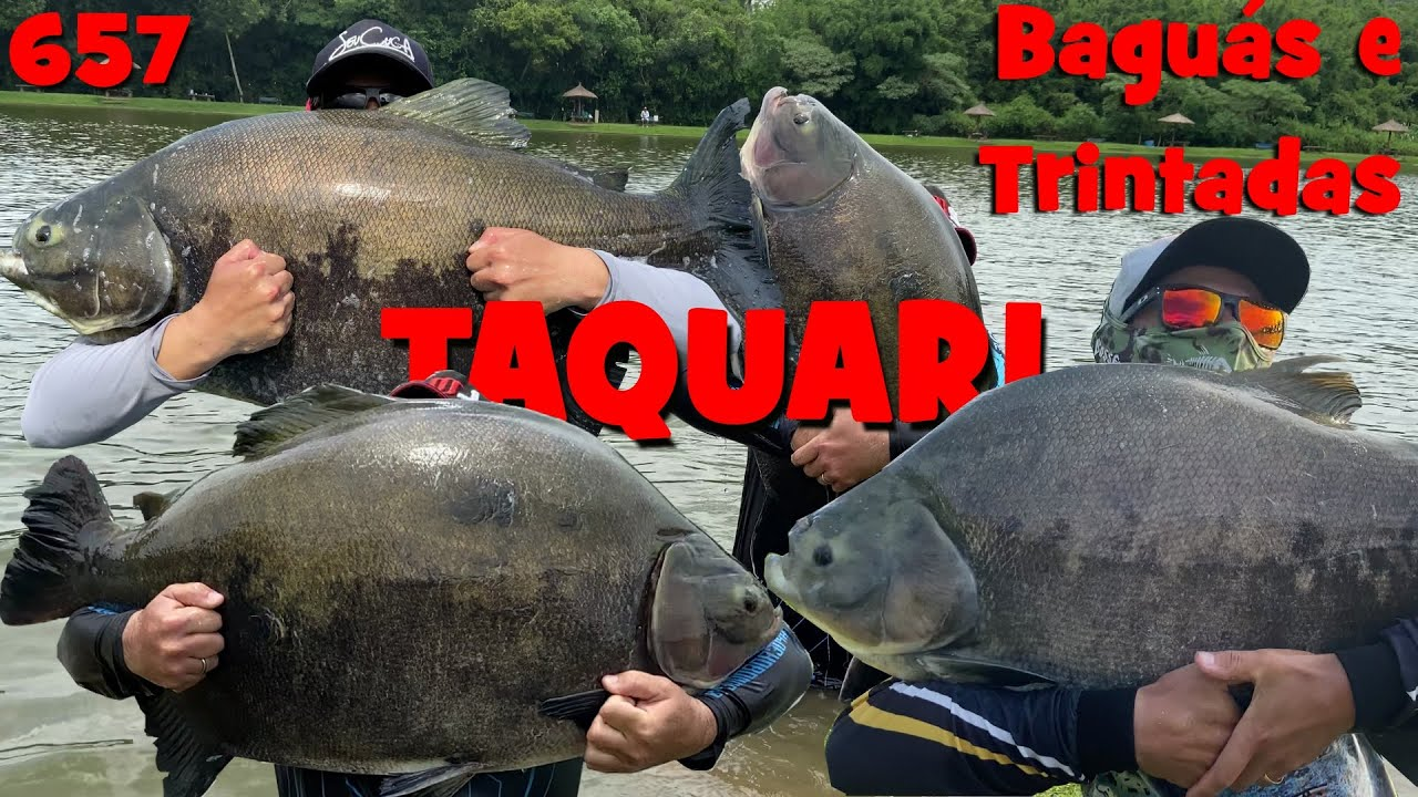 Dia dos Baguás e de Trintada no Taquari - Programa Fishingtur na TV 657