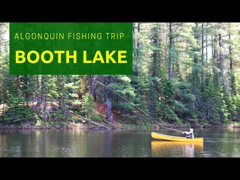 Algonquin Park - Booth Lake Fishing Trip