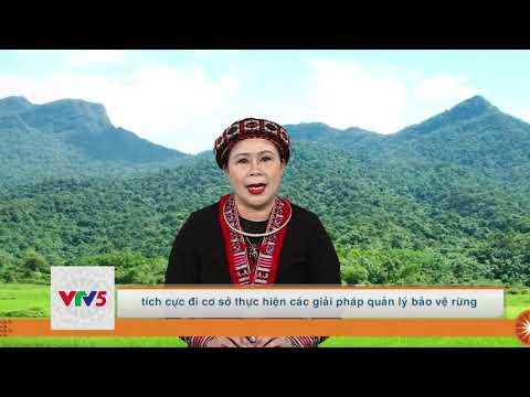 [TIẾNG DAO] BẢN TIN TIẾNG DAO YÊN BÁI | VTV5