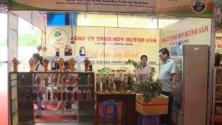Người trồng sâm Ngọc Linh thu hơn 12 tỷ đồng qua hội chợ