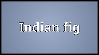 Indian fig Meaning