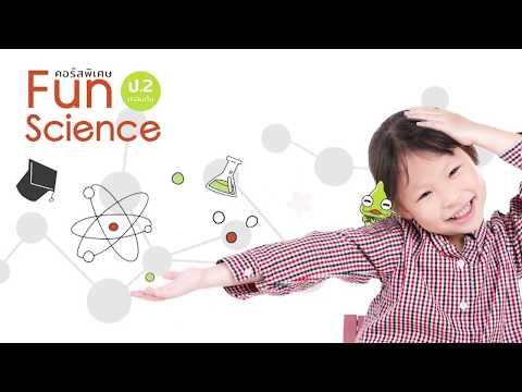 คอร์ส เรียนออนไลน์ วิทยาศาสตร์ ป.2 ชุดการทดลองจัดเต็ม l Scientia