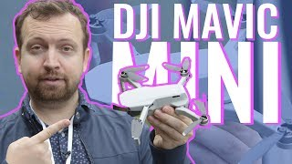 DJI Mavic Mini Drone | hands-on review, specs and first footage