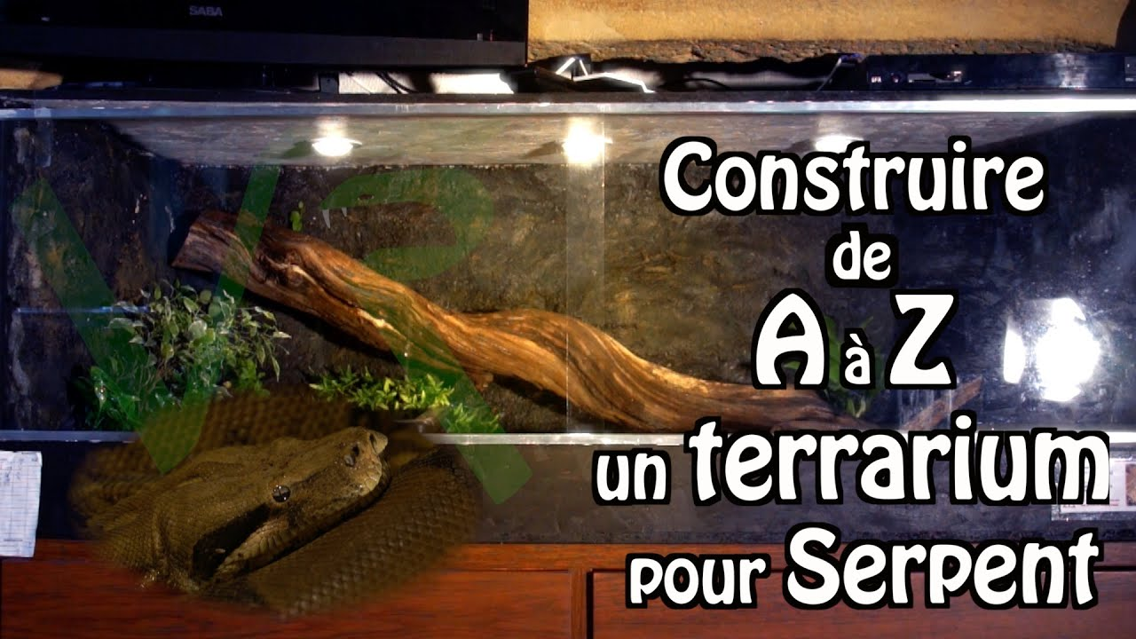 tuto viridis reptile construire un terrarium pour serpent youtube. Black Bedroom Furniture Sets. Home Design Ideas