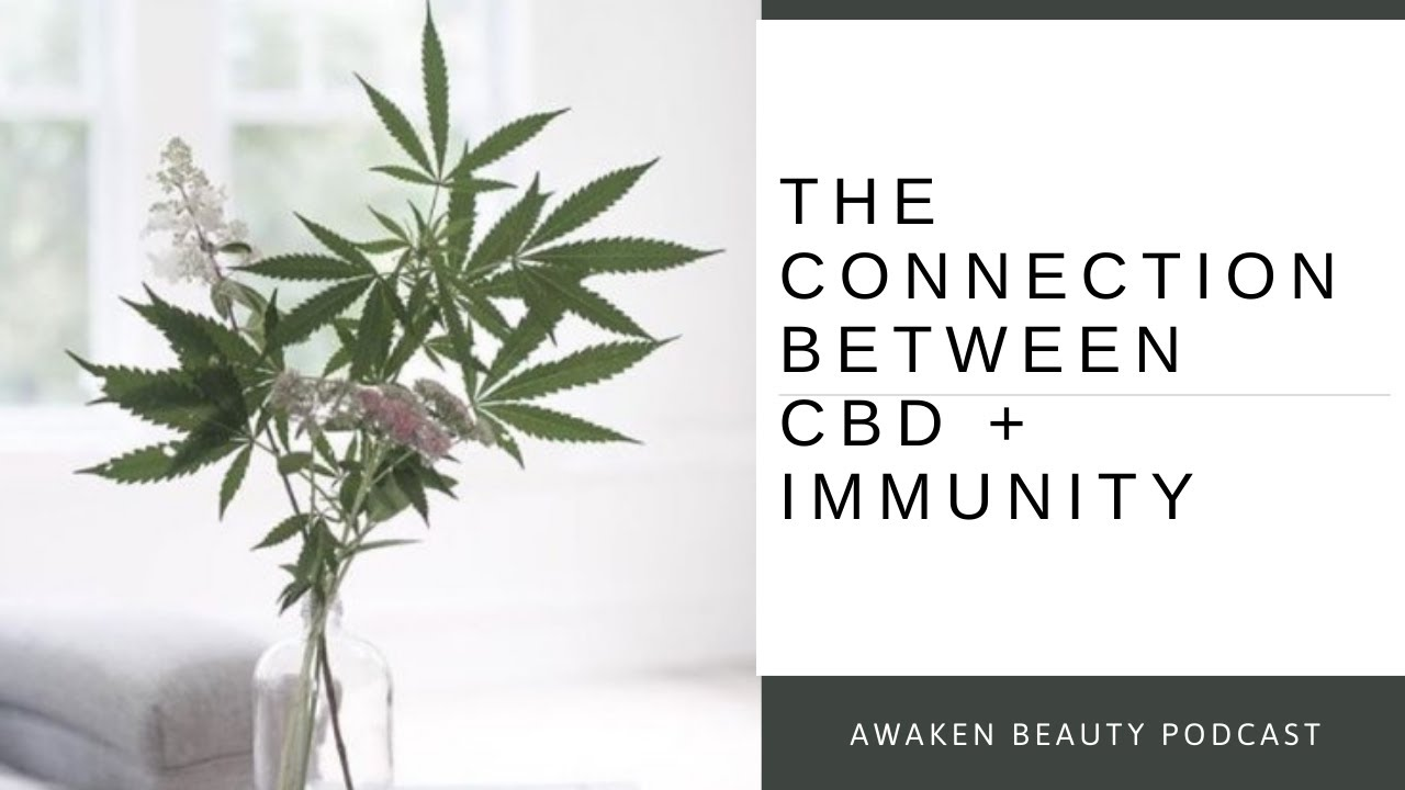 The Connection Between CBD + Immunity