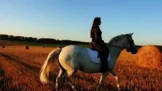 Девушка верхом на лошади, это очень красиво