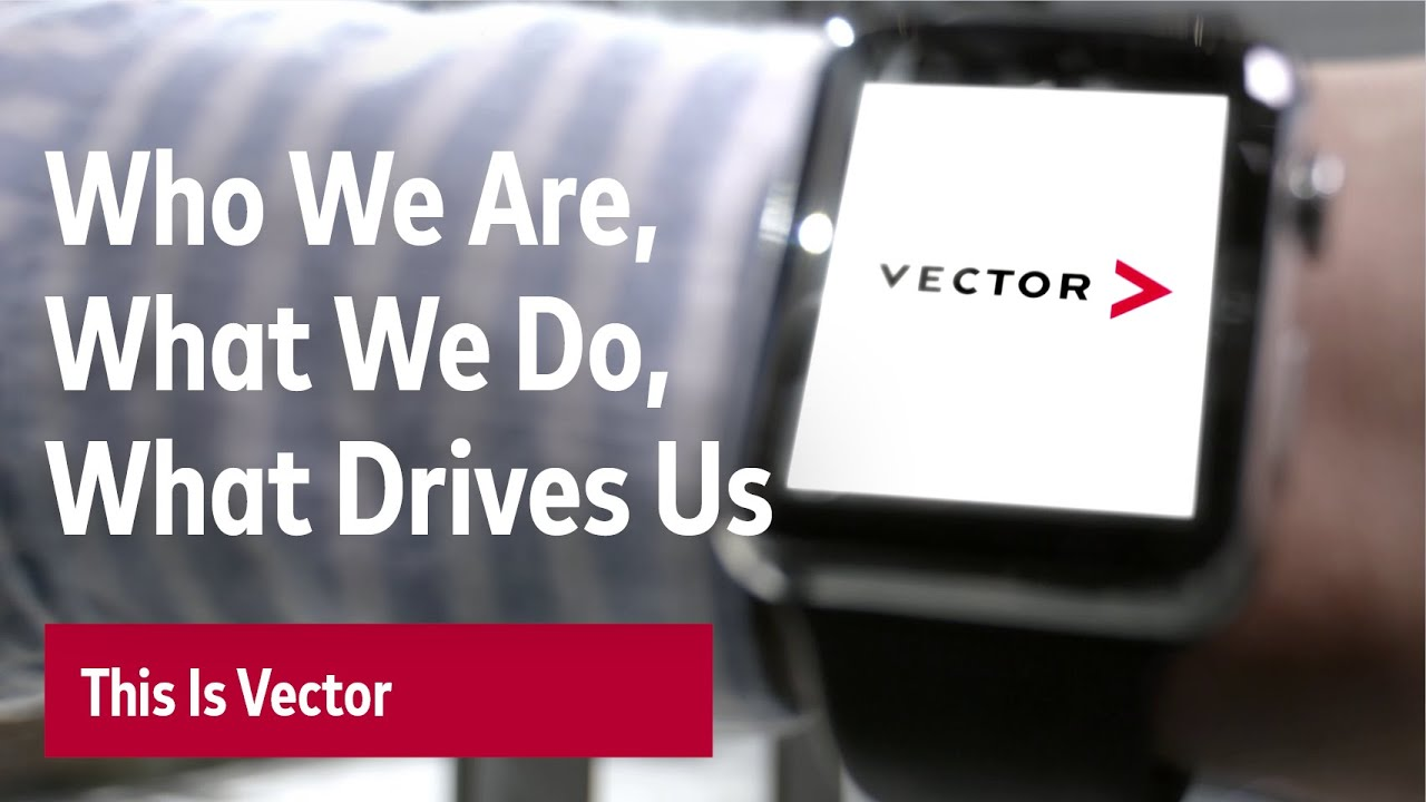 VECTOR – How We Are, What We Do and What Drives Us