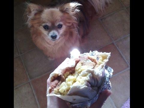 My vegan breakfast burrito recipe (and a very small rant...)
