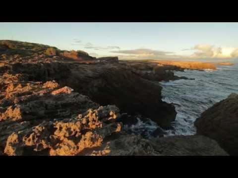 Thunder Point to Shelley Beach - Warrnambool