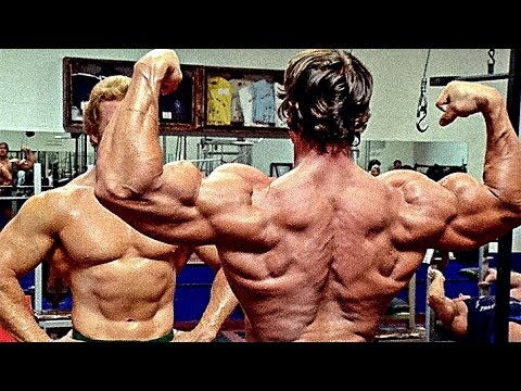 using supplements in bodybuilding and fitness essay Creatine facts and myths this scientifically proven muscle-builder is one of the most popular supplements on the market—and one of the most misunderstood.