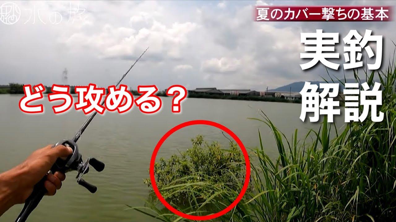 【夏のバス釣り】キャストのコツは?アプローチは?釣るためのキモは?夏のカバーの基本はコレ!!【水の旅# 73】
