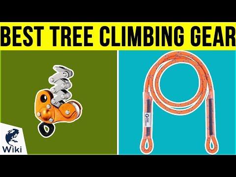 10 Best Tree Climbing Gear 2019