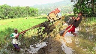 Persiapan Traktor Sawah G1000 dengan Diesel Kubota RD85DI Menuju lahan Sawah